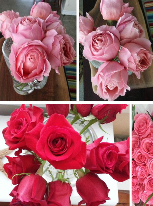 roses-2014