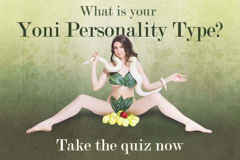 Take the Yoni Personality Type Quiz now