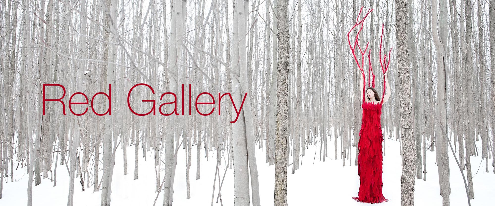 Laüra Hollick Magenta Gallery