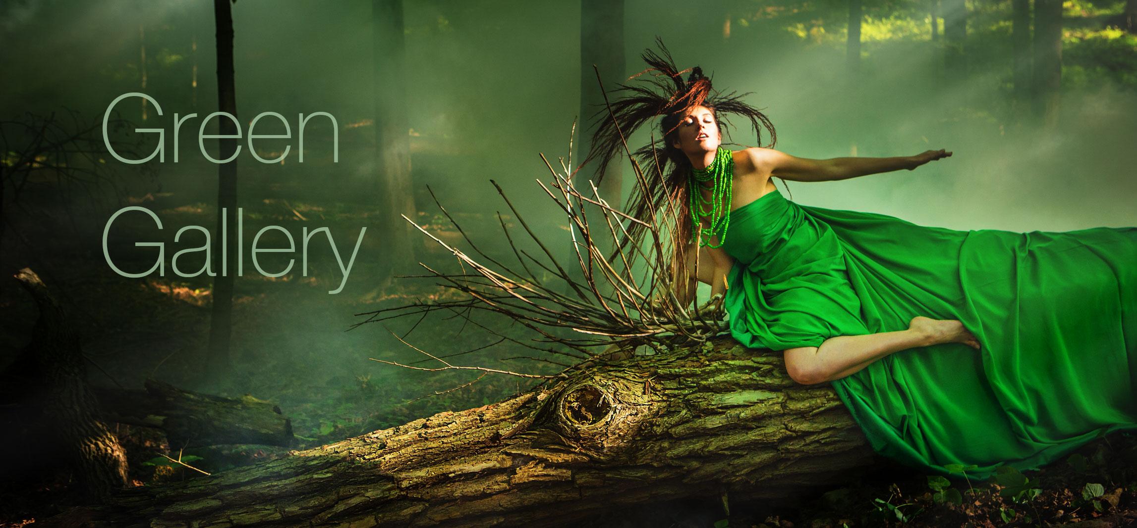 Laüra Hollick's Green Gallery